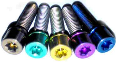 Titanium  Bolts Torx Socket